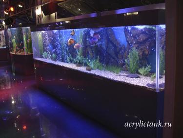 Пятиметровый аквариум