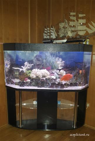Угловой аквариум 500 литров